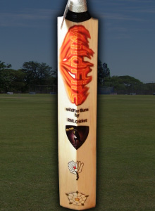 Cricket bat stickers list image